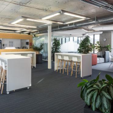 Büro- und Laborausbau Geschäftshaus 2