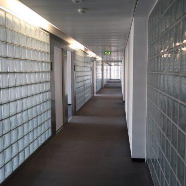 Büroausbau Geschäftshaus 1