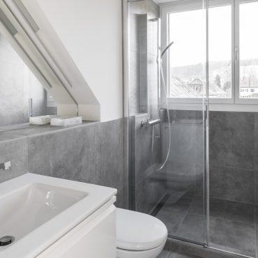 Umbau und Dachstockausbau Einfamilienhaus 4
